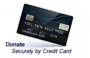 pay-credit-card